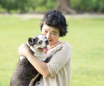 動物達と話します あなたとあなたの大切な家族を心と心でつなぎます。