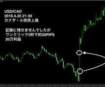証券会社指定なしFX経済指標用EA提供致します エントリー時間がわかり、数秒〜5分程度で決済する方におすすめ