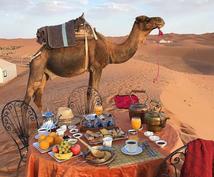 モロッコ全般、アラビア語翻訳全て解決します 翻訳だけでなく、ネイティブがモロッコの疑問にお答えします!