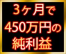 【期間限定】3ヶ月で450万円の純利益を生み出した手法の一部をおすそ分け