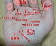画像付きの手相鑑定を致します 手相鑑定に関心があり、文章だけではなく画像でも知りたい方。
