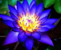 あなただけのオリジナル誘導瞑想作成します 誘導瞑想で日々をすっきりと過ごしてみませんか?