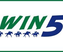 初心者必見☆WIN5の攻略法教えます 競馬予想!初心者の方!効率的な買い方を知りたい方オススメ!