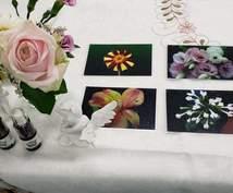 花カードセッションします 花カードを使って心のドアをノックしてみませんか?