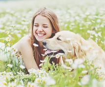 【愛犬と一緒に開運旅行】あなたとペットちゃんの共通のパワースポットをお伝えします。