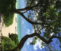 ハワイ旅行のプランニング、スケジュールを受付けます h a w a i i ♡ l o v e r s