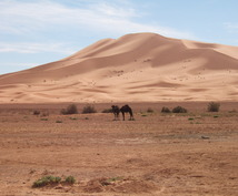 あなたのお好みに合ったモロッコの楽しみ方をご提案します