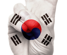 韓国語⇄日本語翻訳します 日韓カップルが共同で行う翻訳!