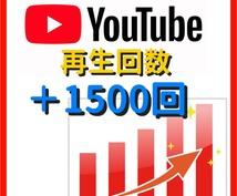 高品質☆YouTube動画1500再生数向上します 広告によるプロモーションで不正なし!¥1000で1500回!