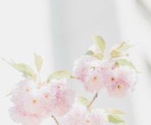 タロット占い★恋愛・仕事・金運鑑定します やさしい言葉で癒しの鑑定いたします(*'ω' *)