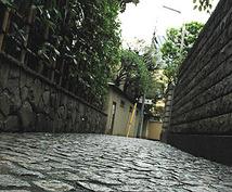 神楽坂の美味しいお店、お散歩コース、猫スポットなど教えます
