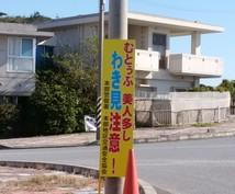 沖縄移住したい方。背中を押します 収入はあるが、自分の人生に不満を感じている人に