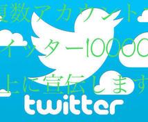 複数アカウントを使ってTwitterで宣伝します どんな内容でも拡散します!ツイッターで宣伝/集客/拡散します