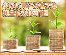少ない見込み客でも収入アップする秘訣を教えます 高額商品の作り方がわからない、売ることに抵抗がある方へ