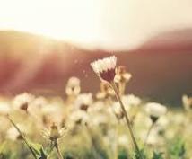 あなたの良いところを見つけます 悩みや不安…思いを私に打ち明けてくださいませんか?