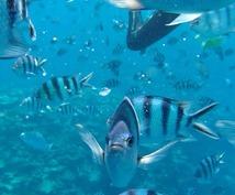あなたに合わせた沖縄旅行の計画を作ります!