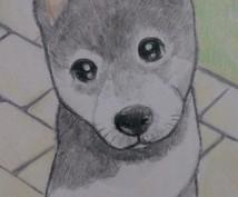 犬の似顔絵 イラスト風に描きます。