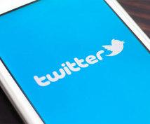 ツールを全く使わずに逆に利用してあなたのTwitterフォロワーを無料且つ健全に増やす方法を教えます