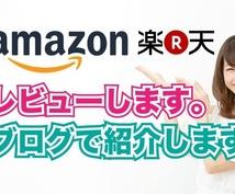 Amazonや楽天のレビュー&ブログで書きます 販売商品を試しレビュー&ブログで販売促進をします。