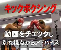 キックボクシング。動画を見てアドバイスします キックの元チャンピオンが別の視点からあなたの動きを分析