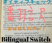 バイリンガル&ネイティブチェック 日英翻訳致します 柔軟でスピーディーに対応致します。