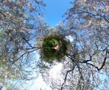 360°カメラで京都の写真を提供します♪気になるスポット、観光、旅行の下見や絵の資料などにも