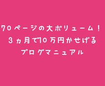 ココナラ限定!7万円を2万円で伝授します 最速で着実に稼げるブログのマニュアルをプレゼント!