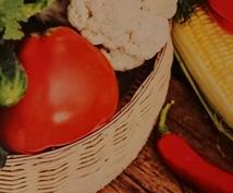 栄養カウンセラーによる効果的な食事法をお伝えします 正しい栄養の摂取法で健康と美容を同時に手に入れましょう!