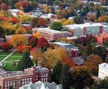 大学留学の相談に乗ります 留学の実態や具体的なステップについて知りたい方へ