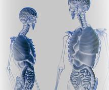1~3年目PTのために腰椎・骨盤帯の情報教えます 明日からの治療が変わる情報満載!