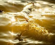 人生の運・不運、心の悩み解決します 心に抱えてしまった[悩みの原因]を探り取り除きましょう。