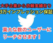 3万インプ保証!最大100万人に拡散します 大企業からも依頼されているTwitter垢で拡散・宣伝・PR