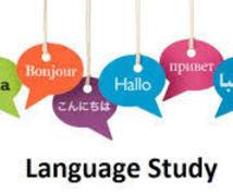 あなたのLABプロファイルパターン分析します あなたとのインタビューから言語パターンを解析します。