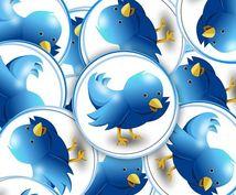 twitter(分散アカウント合計33000フォロワー以上)であなたのサービス、商品をつぶやきます
