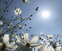 あなたの良き部分を認め、引き出します あなたの人生が好転するきっかけになれたら良いなと思います