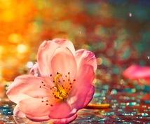 ブライダル装花経験者が、結婚式のお花の相談のります 結婚式の装花でお悩みの方、迷っておられる方へ