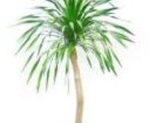 ☆あなたの植物に元気を♪自称植物マスター(笑)が一緒に考えます☆