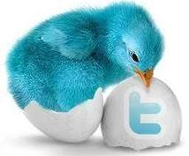 Twitter RTします ツイートを拡散したいかたなどにオススメです‼︎‼︎