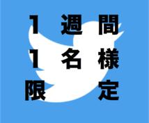 ★商材に適したアカウントに掲載できます!【毎週1名様限定1週間】Twitterによる広告・宣伝・拡散