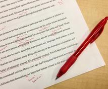 英語文章の校正をします 英語翻訳者があなたの英語文章を丁寧に校正します☆