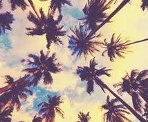 マイアミの楽しみ方教えます 初のマイアミ旅行!思う存分楽しみましょう!
