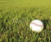 野球好きな人に情報発信やアドバイスをします 野球好きは野球の情報で溢れている!
