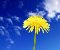 人生相談+チャネリングいたします ◆◆◆今より少しでも心が軽くなるお手伝いを、貴方と一緒に…