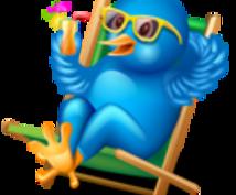 【ご注意下さい!購入者様限定】(保険付)Twitter(ツイッター)ツール最速フォロワー増加術!