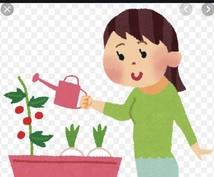 C楽ちん節約家庭菜園とD俺俺詐欺被害防止策教えます 肥料0円草抜き不要でも豊作土作りと30秒で出来る俺俺対策