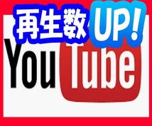 激安!YouTube動画再生数 増やしますます +2000回再生 スタートダッシュの為に