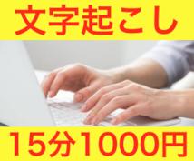 15分1000円!文字起こしします 動画、音声データを文章化されたい方に!時間節約したい方に!
