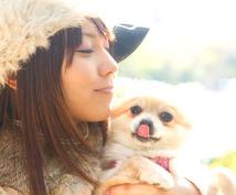 ペットの気持ちを知りたい方へオススメします ペットの気持ちを知ってより良い関係を作りたい方