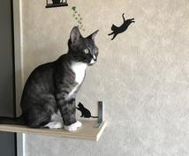 手相鑑定いたします 猫と手相をこよなく愛する猫ばぁばが貴方の手相を鑑定いたします