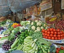 インドのあらゆる物価をお教えします